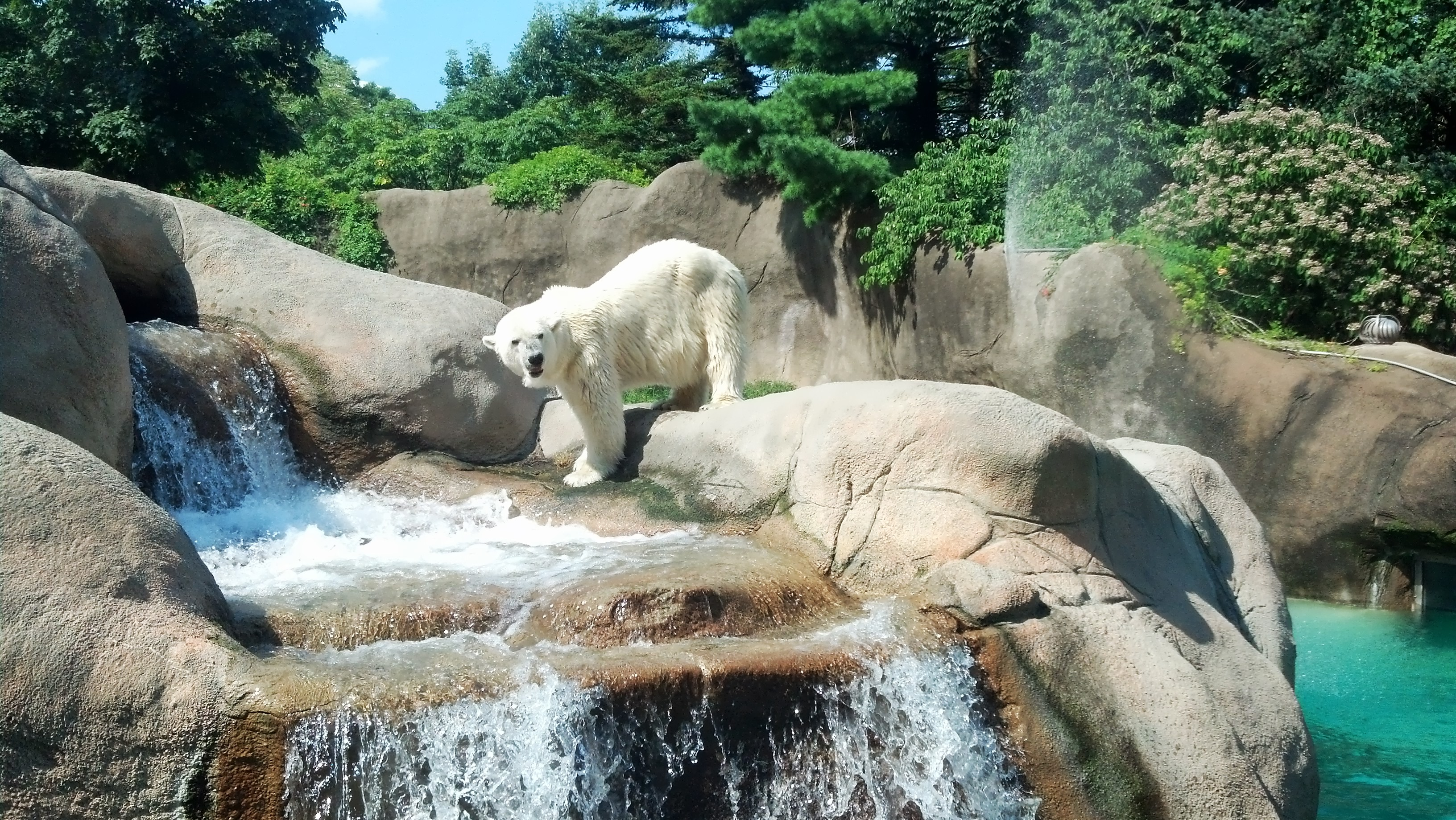 A Day at the Philadelphia Zoo
